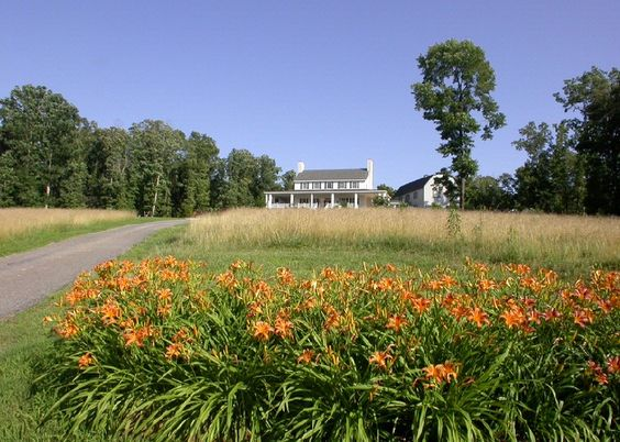 gorgeous green field with flowers in the front and a big white southern house at the top of the picture