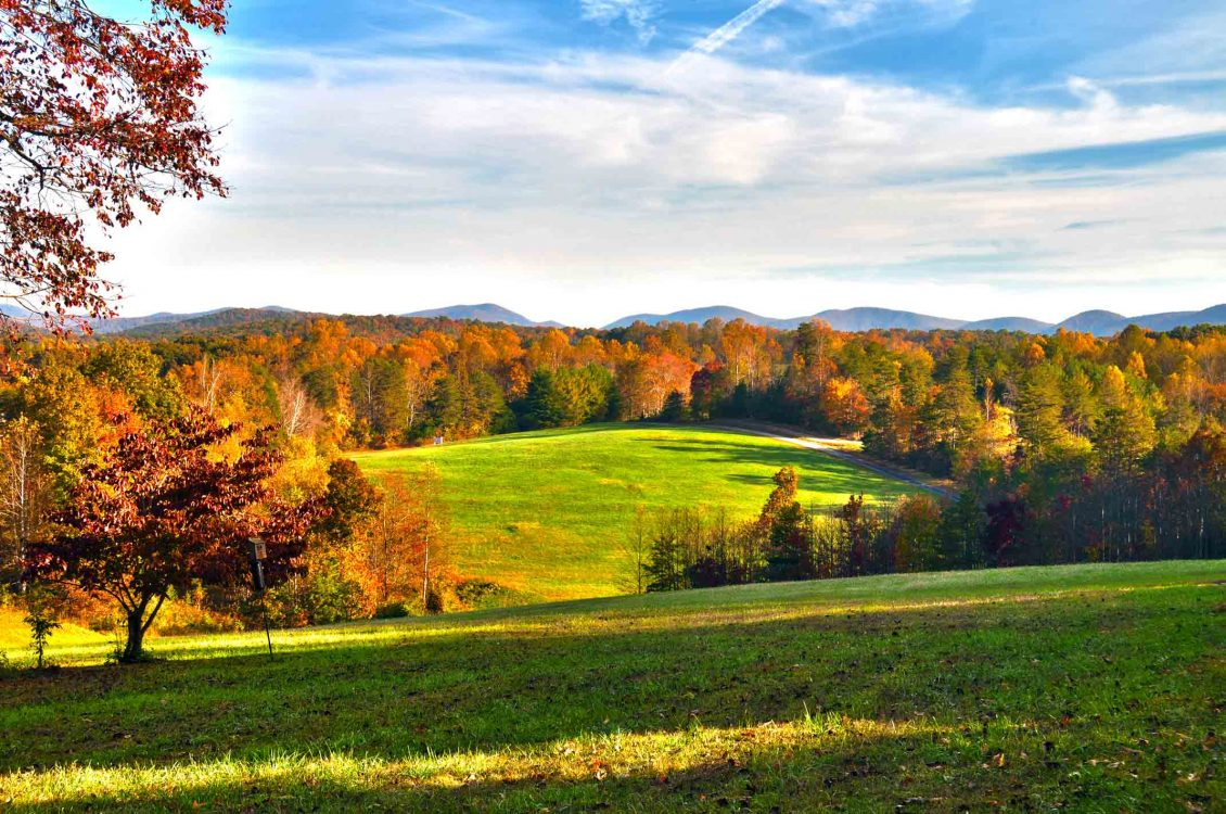 picture of rolling hills with fall trees